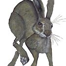 RUNNING HARE h3315 by Hares & Critters