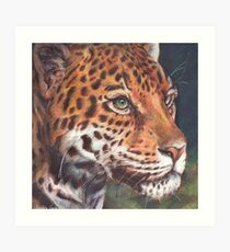 Jaguar in Ballpoint Pen Art Print