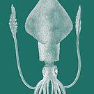 Squid (Aqua) by MissElaineous Designs