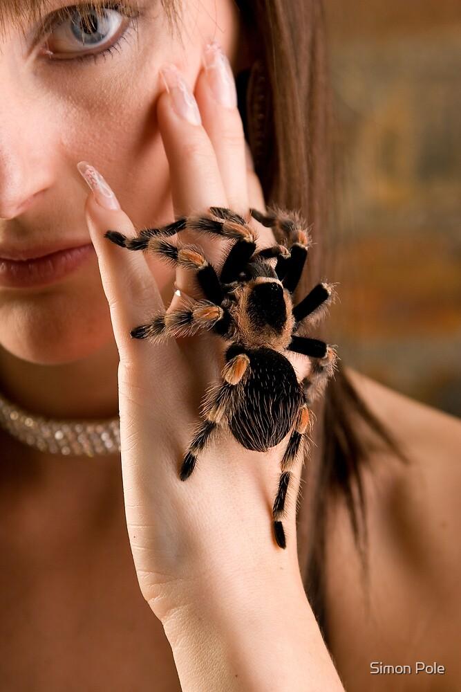 Arachnophobia  by Simon Pole