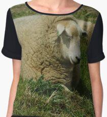 Sleepy Sheep Chiffon Top