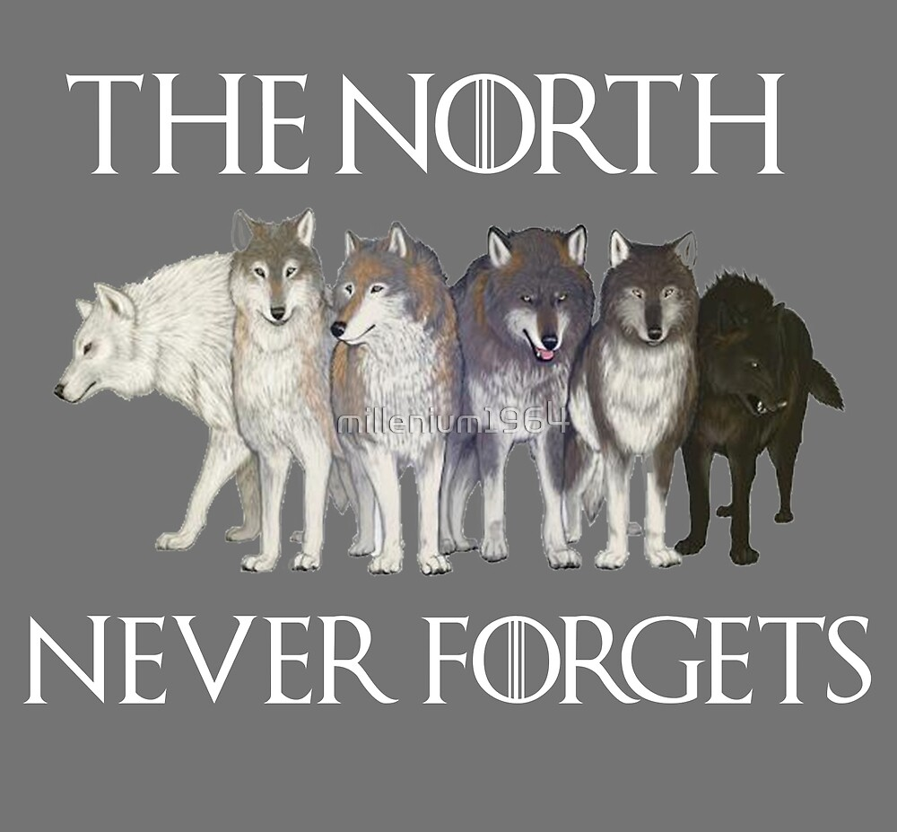The north never forgets by millenium1964