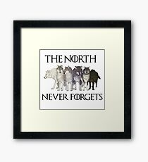 THE NORTH NEVER FORGETS Framed Print