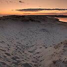 Town Neck Beach by Brian Puhl IPA