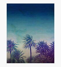 Palm Paradise Photographic Print
