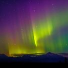 Aurora Dawns Over Denali by Owed To Nature