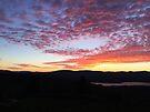 "Multi Colored Clouds by Christine ""Xine"" Segalas"