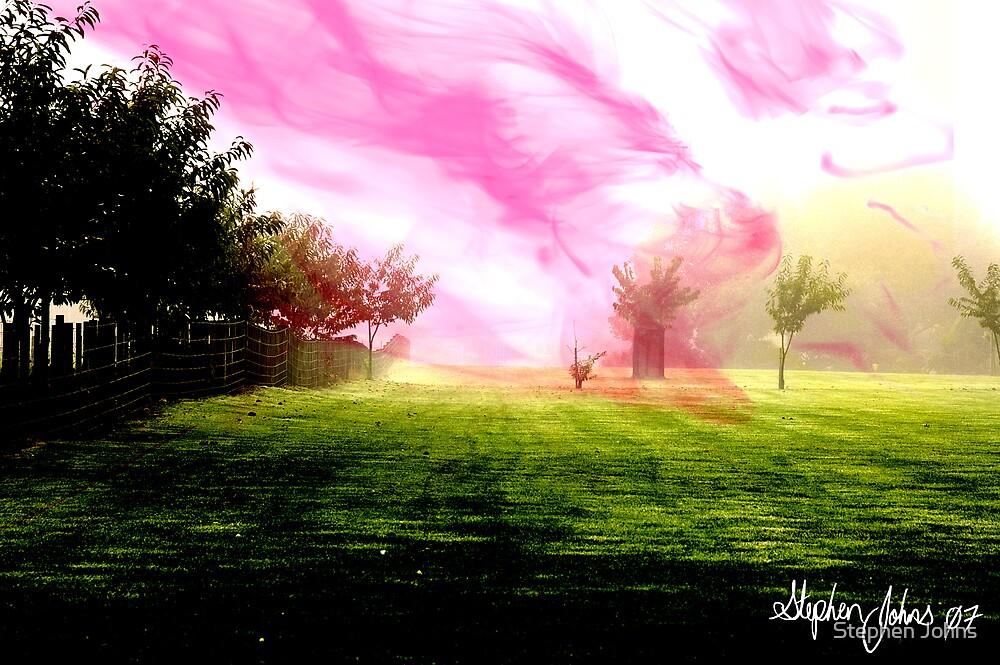 Misty Field by Stephen Johns