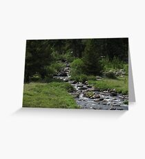 Mountain Stream in WY Greeting Card