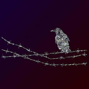 Bird on wire by chihuahuashower