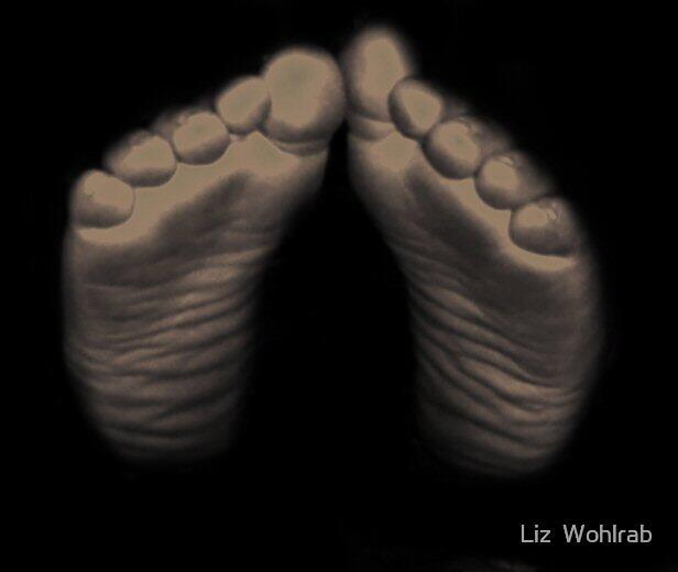 Baby Feet by Liz  Wohlrab