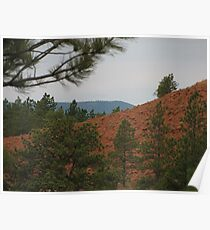 Red Hill and Green Trees Poster