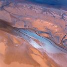 Aerial of a delta by Michelle Dry