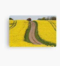 Track Through Yellow Canvas Print
