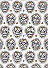 sugar skull hero by Andi Bird