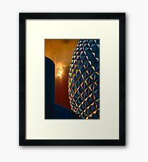 EPCOT Framed Print