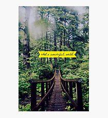 Wonderful World Photographic Print