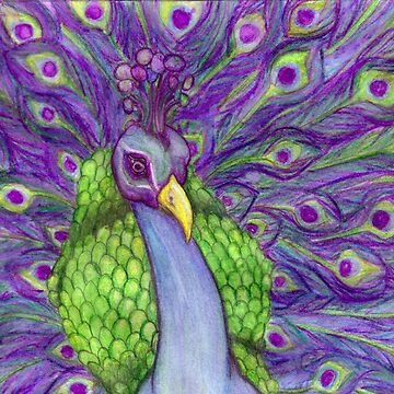 Beautiful Bright and Vibrant Peacock Portrait Watercolor Pencil Painting Unique and Original Art Print by midnightdreamer