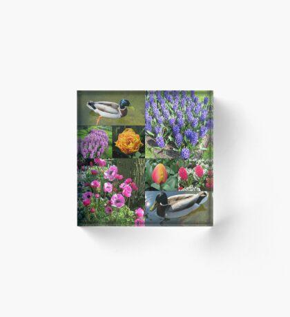 Flowers and Feathers - Keukenhof Collage Acrylblock