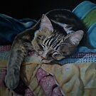 Sleeping Kitty by Pam Humbargar