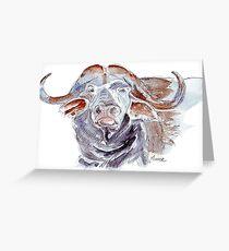 African buffalo or Cape buffalo (Syncerus caffer) Greeting Card