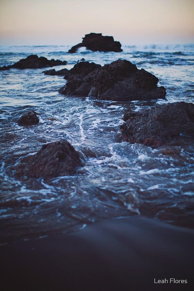 Arcadia Beach by Leah Flores