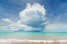 Towering Cumulus by Mieke Boynton