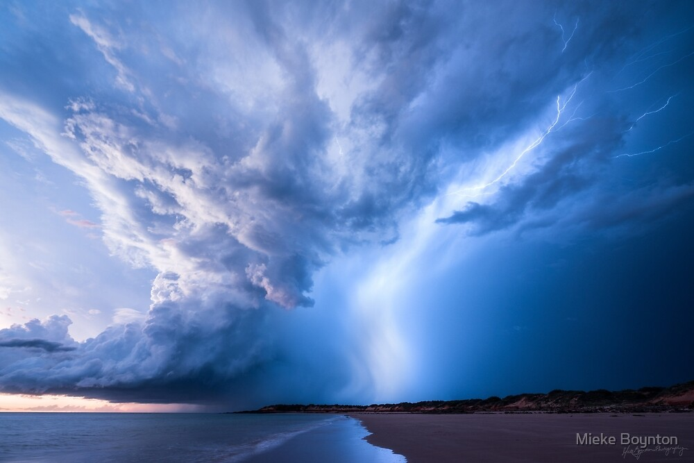 Bolt from the Blue by Mieke Boynton