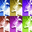 Pop Art Chihuahua  by Rebekah  McLeod