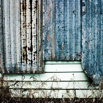 Weather Board, Corrogated Iron, and Weeds by Ohlordi