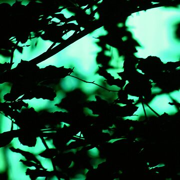 neon trees I by ralph