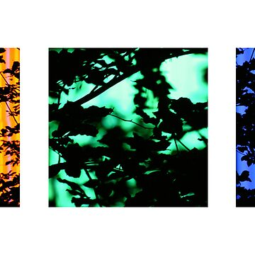 neon trees by ralph