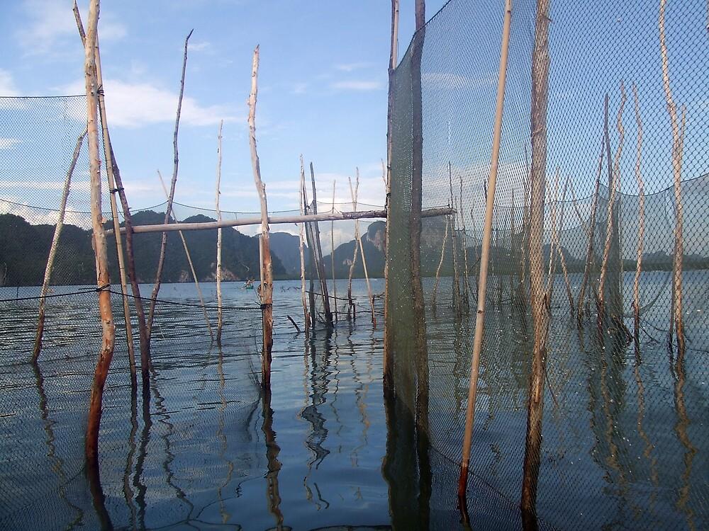 inside the fishing net by KimmyEvans