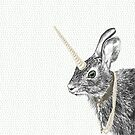 Uni-hare. All animals are magical. von Barbara Baumann Illustration