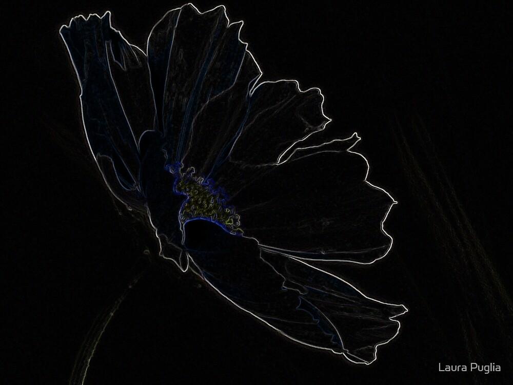 """Poppy of Delight"" by Laura Puglia"