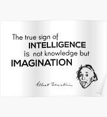 intelligence is imagination - albert einstein Poster