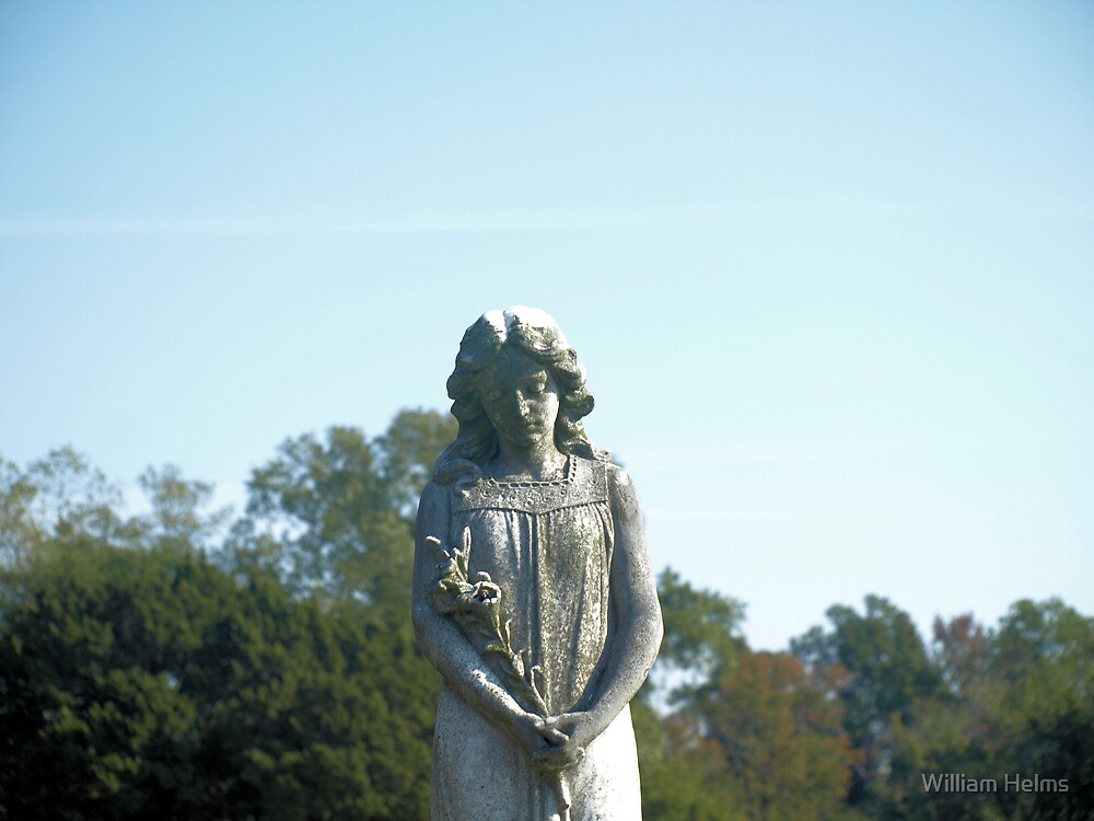 The Statue by William Helms