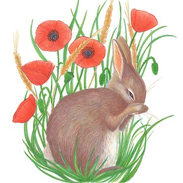 shy bunny among poppies by EllenLambrichts