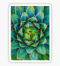 Succulent succulent Sticker