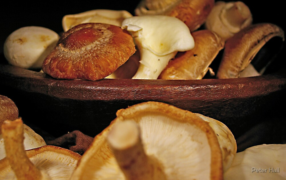 Still life, with bowl and mushrooms by Peter Hall