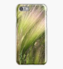 Shores of Lake Ontario - Carruthers Marsh 2 iPhone Case/Skin