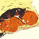 Sleeping Cats by Carrie Dennison