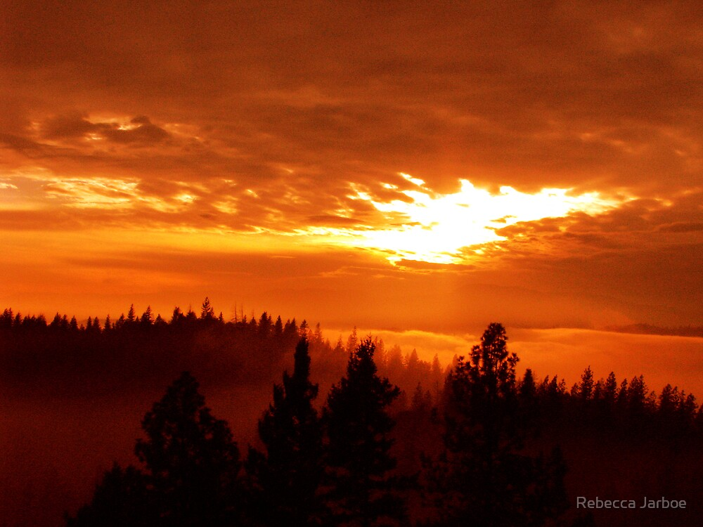 Fire in the Sky by Rebecca Jarboe