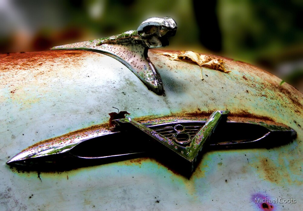 I Could've Had A V-8 by Michael Coots