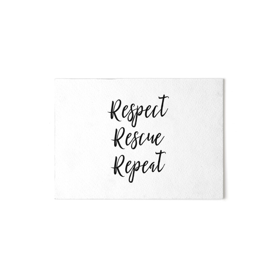 "Vegan Quotes Animal Lover Vegan Quotes  Respect Rescue Repeat"" Art Boards"