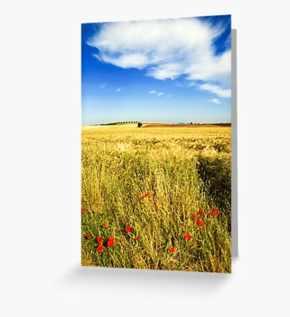 Poppies and cloud Greeting Card