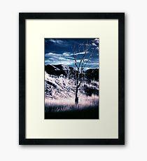 Winter prairie  Framed Print