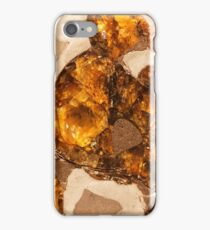 Macro photo of the Pallasovka meteorite iPhone Case/Skin