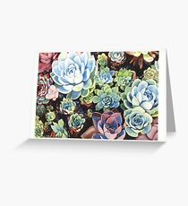 Succulent Field (watercolor) Greeting Card
