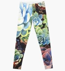 Succulent Field (watercolor) Leggings